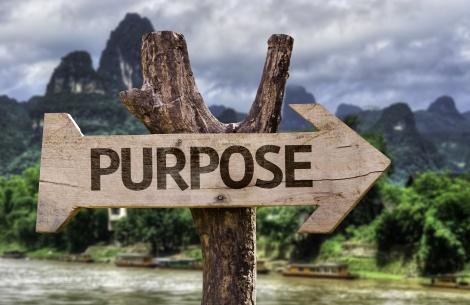 636071356953155711-1944115779_purpose-driven